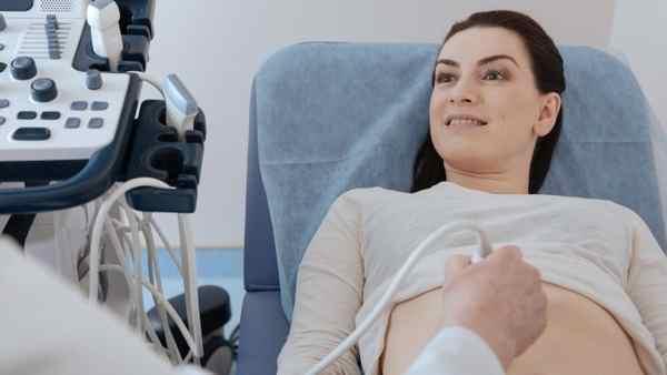 УЗИ почек при беременности: можно ли?