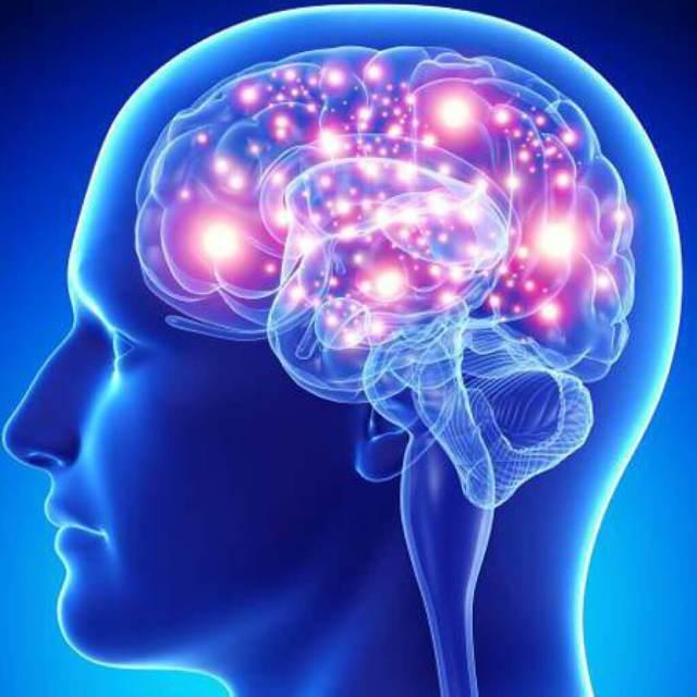Эндоскопия головного мозга (вентрикулоскопия)