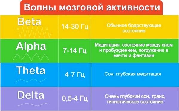 Ритмы ЭЭГ (альфа, бета, гамма, дельта): характеристика, связь с мозгом