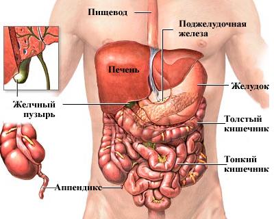 КТ брюшной полости с контрастированием