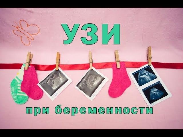 Первое УЗИ после после переноса эмбрионов (ЭКО)