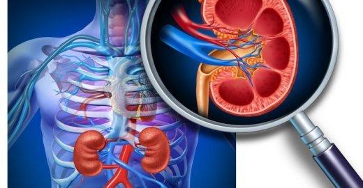 УЗДГ (допплерография) почечных артерий