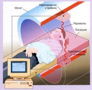 МРТ с контрастом: противопоказания, подготовка, для чего?