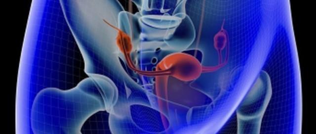 Рак шейки матки и эндометрия на УЗИ