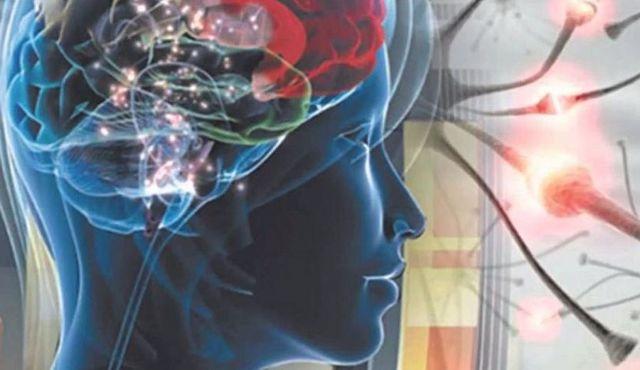 МРТ головного мозга при эпилепсии: что показывает?