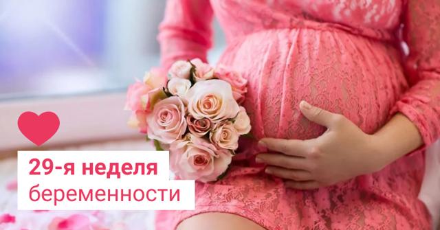 УЗИ на 28-29 неделе беременности
