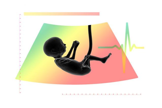 Ктр плода на узи при беременности – что это такое?