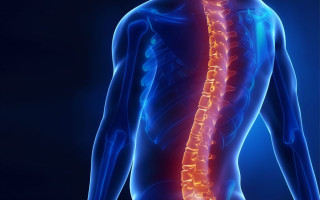 МРТ позвоночника: что показывает, как проходит?