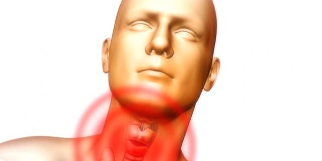 УЗИ горла и гортани: что показывает?